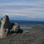 Alaska-Adventure-(2657)