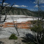 Mammoth Springs - Yellowstone National Park