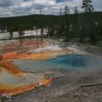Yellowstone - Firehole Lake Drive 3