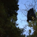 We needed to cache our food in the trees, no metal caches here...