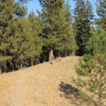 Jason and Lincoln lead the way into the trees at Johnstone Creek